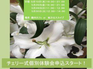 5月チェリー式個別体験会申込スタート!